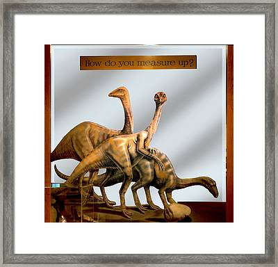Museum Exhibit Dinosaurs Struthiomimus Framed Print