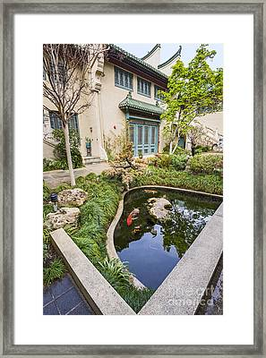 Museum Koi - Courtyard Of The Pacific Asia Museum In Pasadena. Framed Print