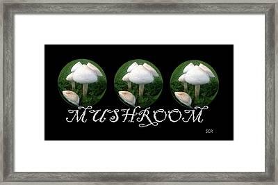 Mushroom Art Collection 2 By Saribelle Rodriguez Framed Print by Saribelle Rodriguez