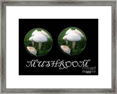 Mushroom Art Collection 3 By Saribelle Rodriguez Framed Print by Saribelle Rodriguez