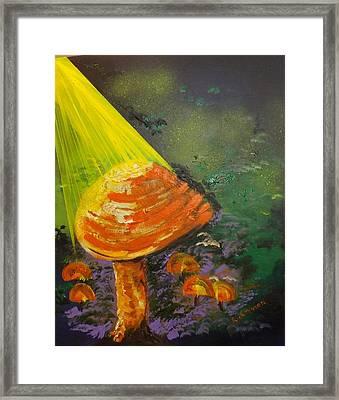 Mushroom Birth Framed Print