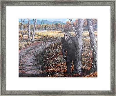 Mushroom Hunter Framed Print by Michael Wawrzyniec