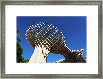 Mushroom Structure, Metropol Parasol Framed Print