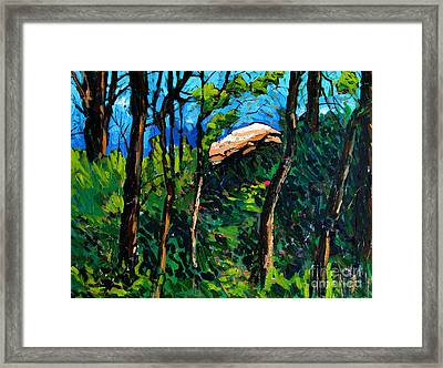 Mushrooming At Treaty Rock Framed Print by Charlie Spear