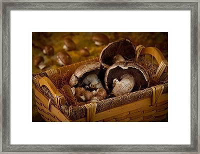 Mushrooms2166 Framed Print