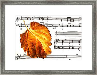 Framed Print featuring the photograph Music In Autumn by Marwan Khoury