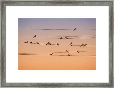 Music Of Light Framed Print