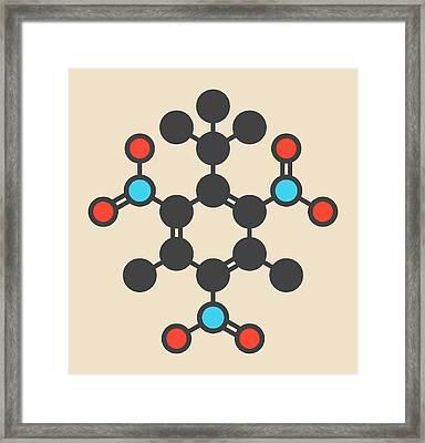 Musk Xylene Molecule Framed Print