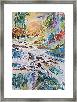 Muskoka Stream Framed Print