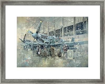 Mustang At Warton Framed Print by Peter Miller
