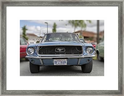 Mustang Dreams Framed Print