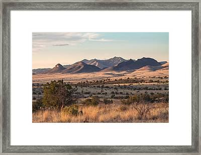 Mustang Evening Framed Print by Beverly Parks
