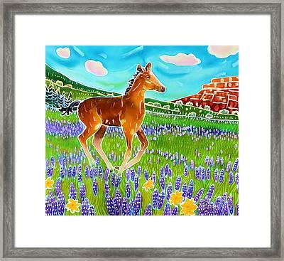 Mustang Foal Framed Print