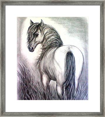 Framed Print featuring the drawing Mustang by J L Zarek