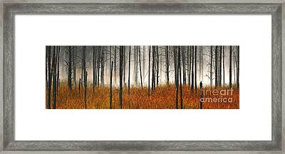 Framed Print featuring the photograph Mute Dog Forest Pano by Clare VanderVeen