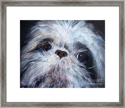 Mutual Admiration Framed Print by Mary Lynne Powers