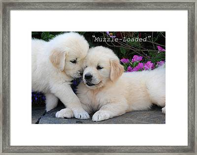 Framed Print featuring the photograph Muzzle -  Loaded by Paul Miller