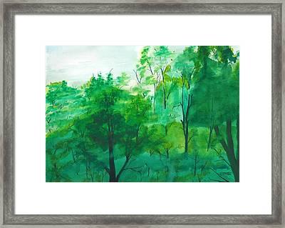My Backyard Framed Print