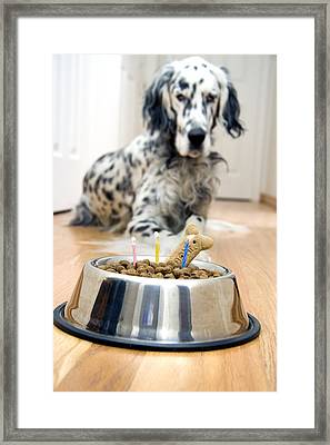 My Best Friend's Birthday Framed Print