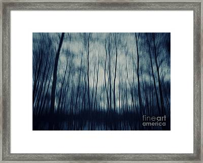 My Dark Forest Framed Print by Stelios Kleanthous