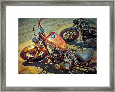 My Dirty Habit Framed Print by William Schmid