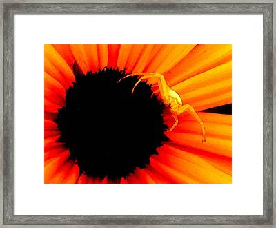 My Domain L Framed Print