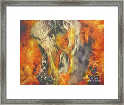 My Dove In The Cleft Of The Rock Framed Print