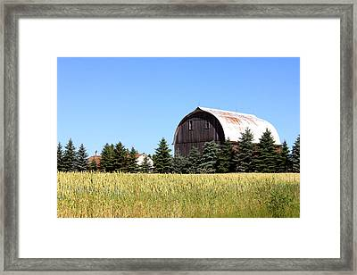 My Favorite Barn Framed Print by Sheryl Burns