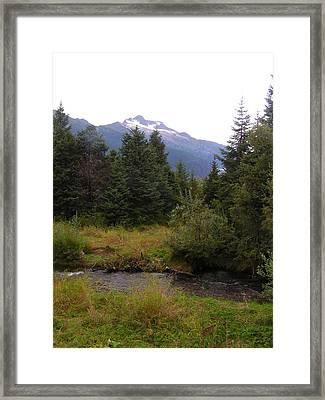 My Favorite Bear Watching Spot Framed Print