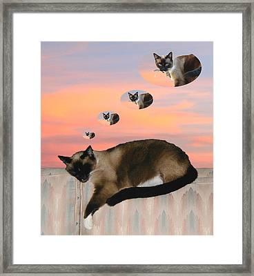 My Favorite Dream - Mouse Hunt Framed Print