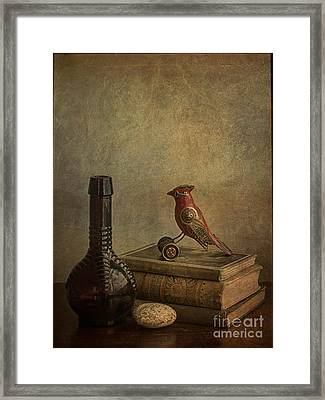 My Favorite Things Framed Print by Terry Rowe