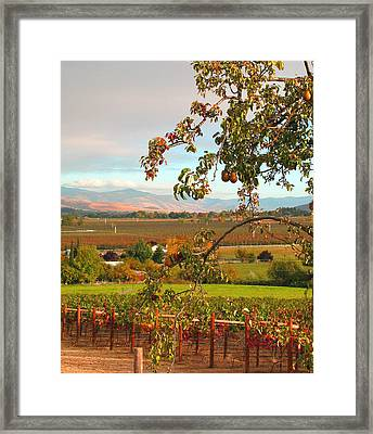 My Favorite Valley View - Autumn In Southern Oregon Framed Print