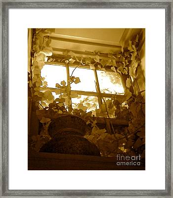 My Favorite Window At The Mill Framed Print by Delona Seserman