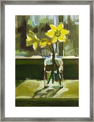 My First Daffodils Framed Print by Annie Salness