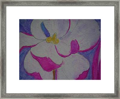 My Flower Framed Print by Yvette Pichette
