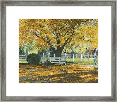 My House Framed Print by Don  Langeneckert