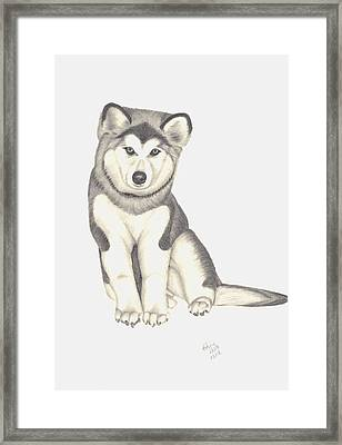 My Husky Puppy-misty Framed Print by Patricia Hiltz