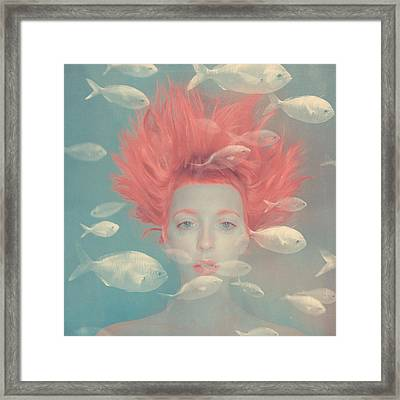 My Imaginary Fishes Framed Print by Anka Zhuravleva