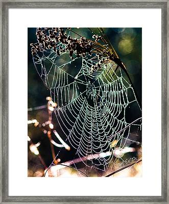 Framed Print featuring the photograph My Jewelry by Tom Cameron