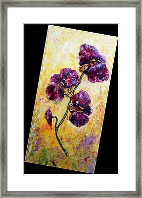 My Little Violet Orchids  Framed Print