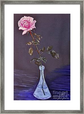 My Mothers Rose Framed Print by Nina Ficur Feenan
