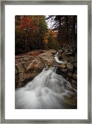 My New England Framed Print