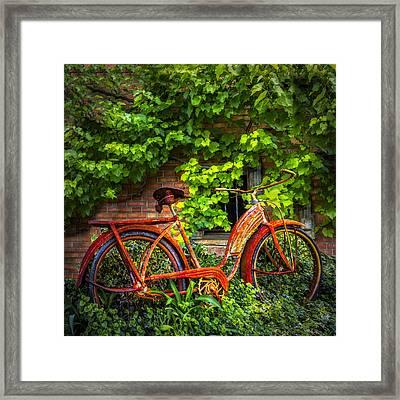 My Old Bicycle Framed Print by Debra and Dave Vanderlaan