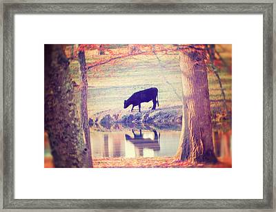 My Own Paradise Framed Print