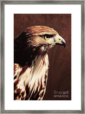 My Prince Will Come Framed Print by Floyd Menezes