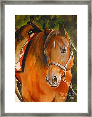 My Quarter Horse Framed Print