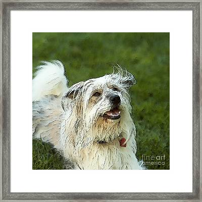 My Schnitzel Framed Print by Artist and Photographer Laura Wrede