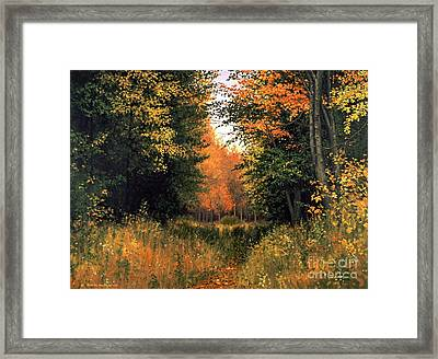 My Secret Autumn Place Framed Print