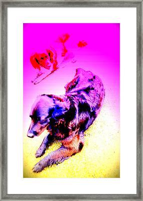 My Dog Has Her Own Secret Friend  Framed Print by Hilde Widerberg