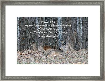 My Secret Place Framed Print by Lorna Rogers Photography